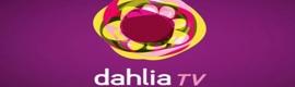 Dahlia Tv abandona sus planes de expansión en España