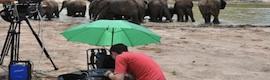 'Distant Thunder': Anton/Bauer se va de safari a Kenya