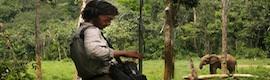 Los micros de DPA recogen los sonidos de la selva