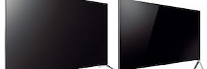 Sony lanza los nuevos monitores profesionales LED Bravia 4K