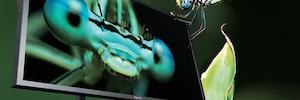 Eyevis mostrará en IBC su nueva pantalla de 85 pulgadas en Ultra Alta Definición pensada para estudios de televisión